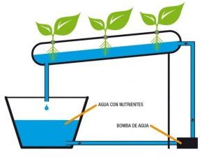 sistema hidropónico NFT
