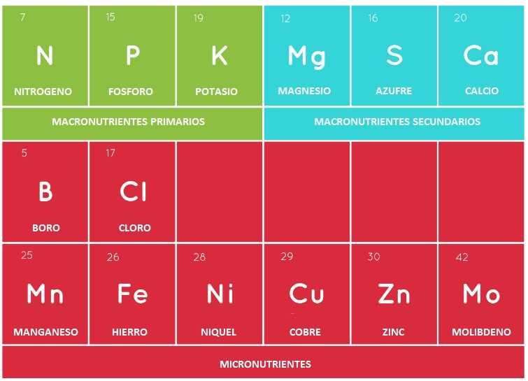 Nutrientes para hidroponía