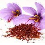 hierbas y flores aromaticas hidropónicas